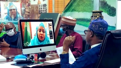 Photo of FG to establish National Endowment to foster professionalism in Arts