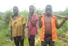 Photo of Troops rescues kidnapped victims from bandits in Kaduna
