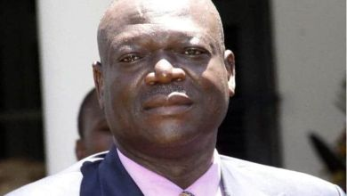 Photo of Zimbabwe agriculture minister Perrance Shiri dies