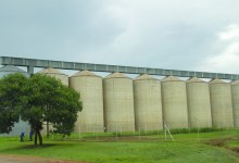 Photo of Zim farmers deliver 97 000 tonnes of maize to strategic grain reserves