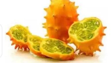 Photo of Thorny melon/jelly melon