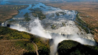 Photo of Zim's re-opening of tourism sector yields positive results