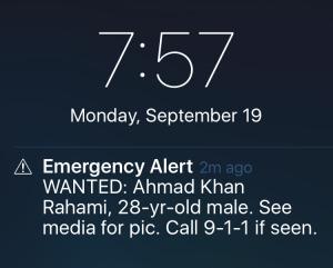 Screenshot/The New York Times