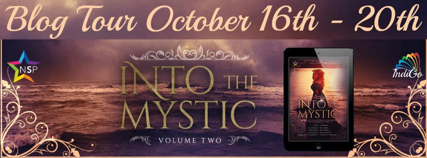 Into The Mystic 2 Tour Banner