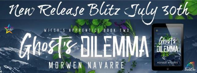 Morwen Navarre - Ghost's Dilemma Banner