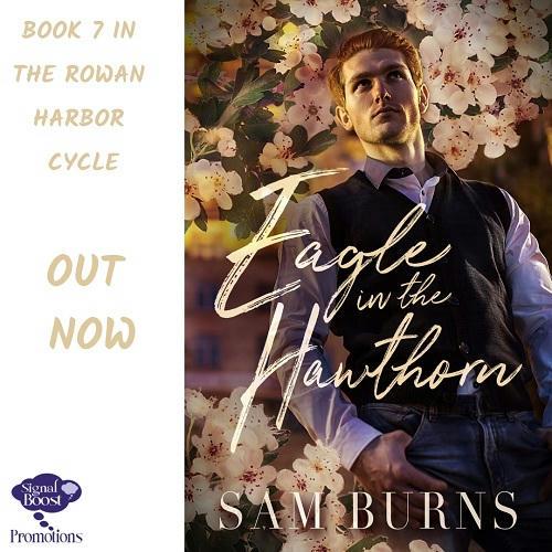 Sam Burns - Eagle In The Hawthorn INSTAPROMO-35