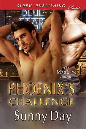Sunny Day - Phoenix's Challenge Cover
