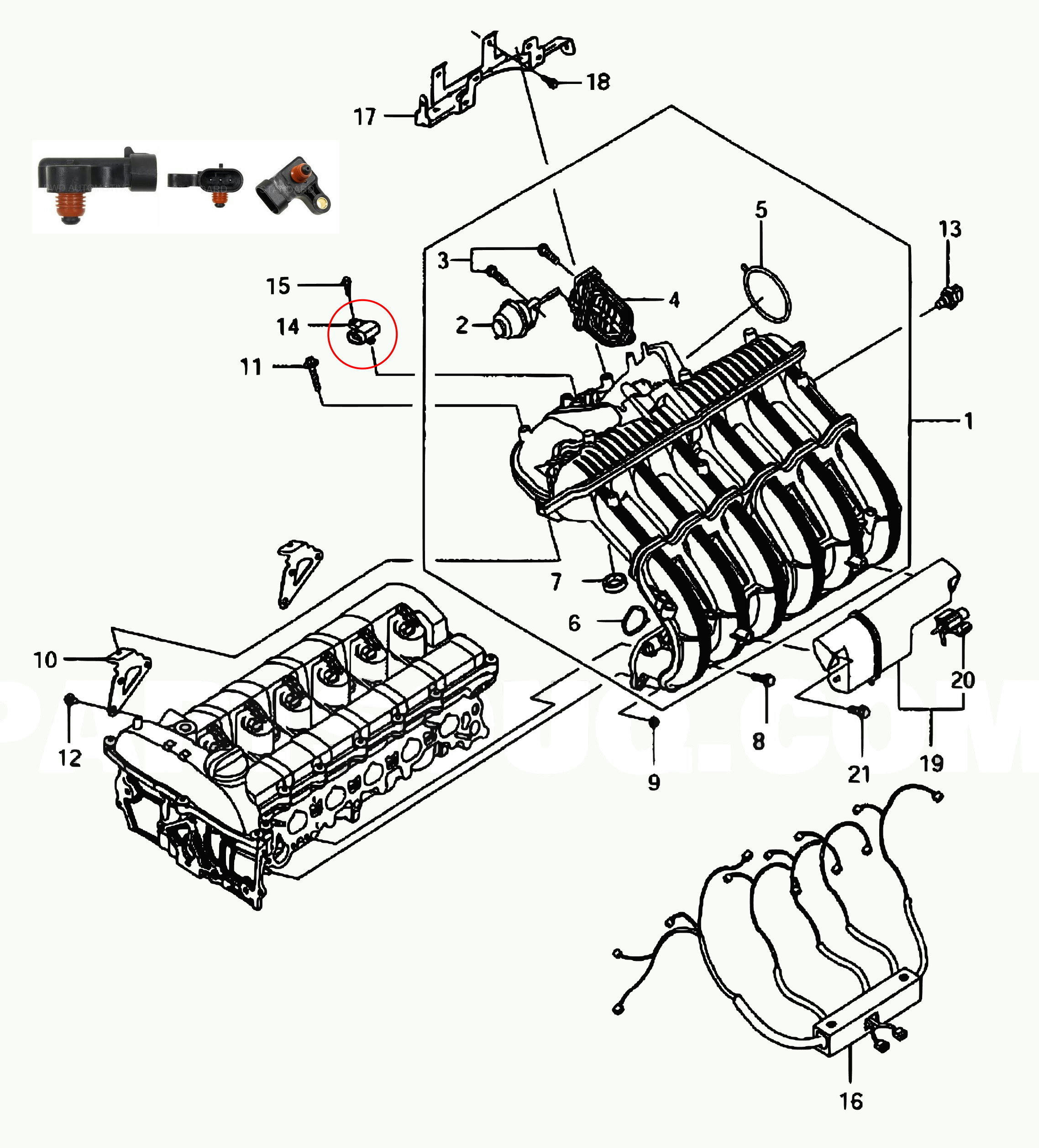 Nissan 200sx Belt Diagram