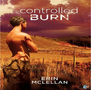 Erin McLellan - Controlled Burn Square