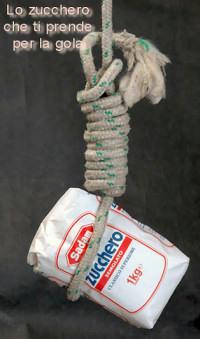 Zucchero Saddam