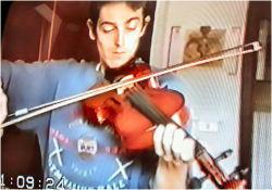 Wayl Violino 01