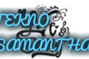 Lyrics: Tekno- Samantha