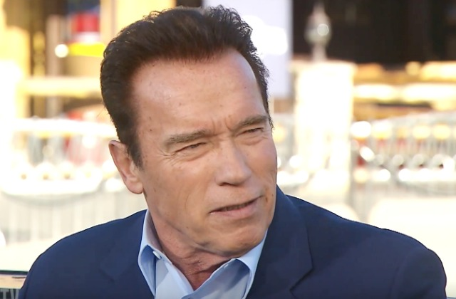 Image result for Arnold Schwarzenegger is Thinking About Running for Senate in 2018