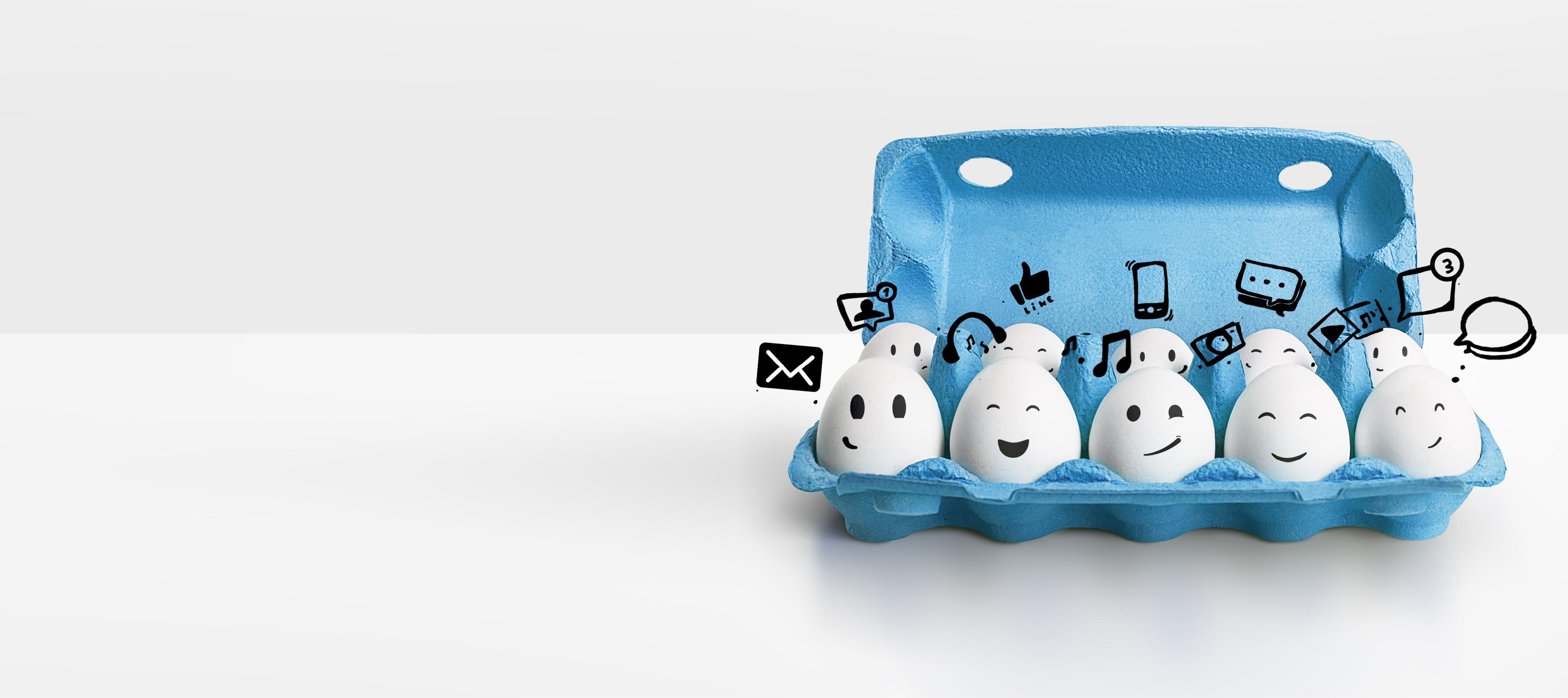 eggs in cases - media link digital marketing agency