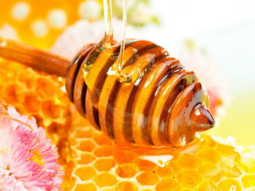 manfaat royal jelly