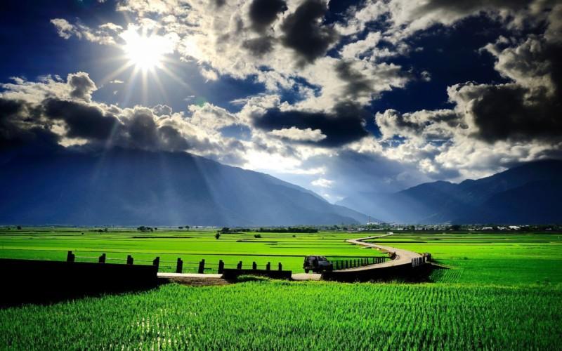Pemandangan Sawah dan Gunung
