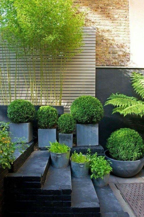 pot tanaman berbentuk kubus