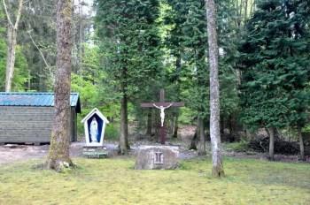 chapelle-tinseubois-vierge