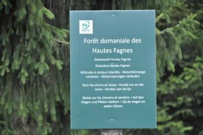 La forêt domaniale des Hautes Fagnes se distingue de la réserve naturelle.