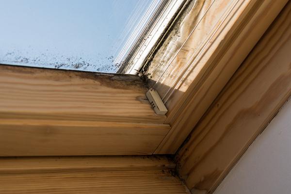 Skylight frame with mold.