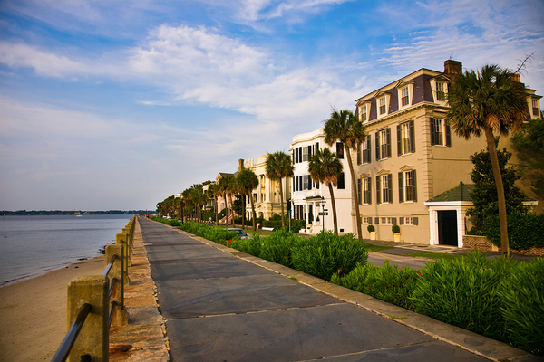 Seaside houses with palm trees.