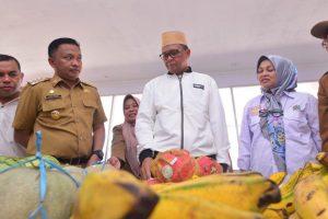 Nurdin Abdullah: Selamat Kepada Joko Widodo-KH Ma'ruf Amin
