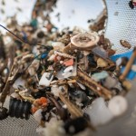 Tanpa Disadari Setiap Pekan, Manusia Konsumsi Plastik Seberat Kartu Kredit