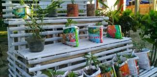 "Hadapi Corona, Warga Desa Tangga Jaya Gorontalo, Ramai Bikin ""Dego-Dego"" Wadah Tanaman Obat Keluarga"