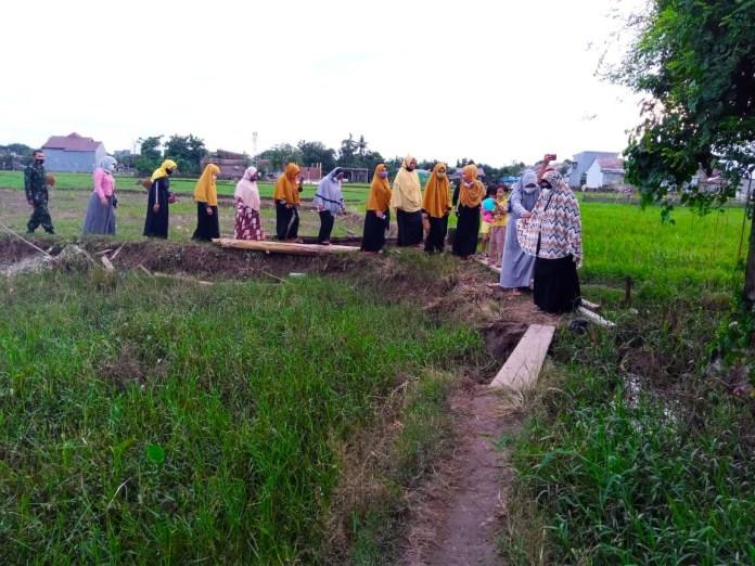 Meski Telusuri Pematang Sawah, Permata Birma Tetap Semangat Bagikan Bantuan