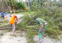 BPBD Selayar Rutin Lakukan Penanganan Pohon Tumbang