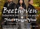 Proiectul-Integrala trio-urilor cu pian ale lui Ludwig van Beethoven