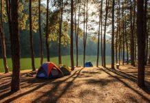 Harga Tiket Masuk Hutan Pinus Mangunan Dlingo Bantul Jogja