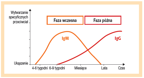 Borelioza IgM met. Western Blot