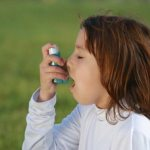 Asthma and allergy in children increased risk for fast food ?