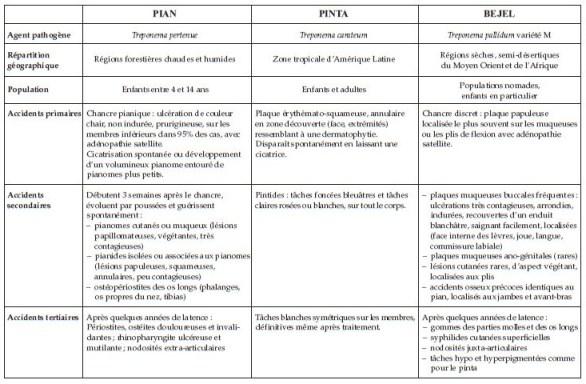 Signes cliniques Tréponématoses