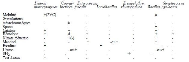 TABLE II: main differential characteristics of Gram-positive bacteria (excluding morphology)