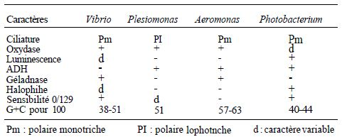 TABLE I: differential characters different Vibrionaceae