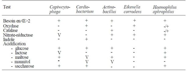 Character identification difficult growing bacilli