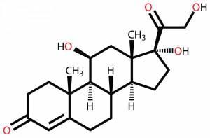 Cortisol plasmatique