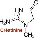 Créatininémie