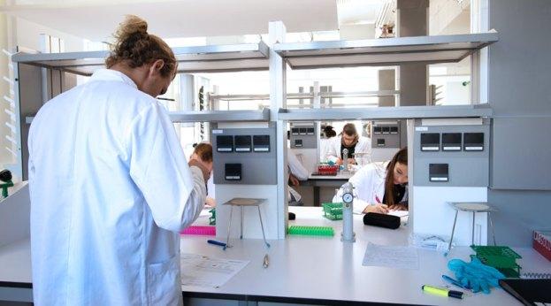 Medizinstudenten im Labor