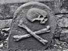 Bright Side of Black Death