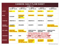 Daily Flow Sheets