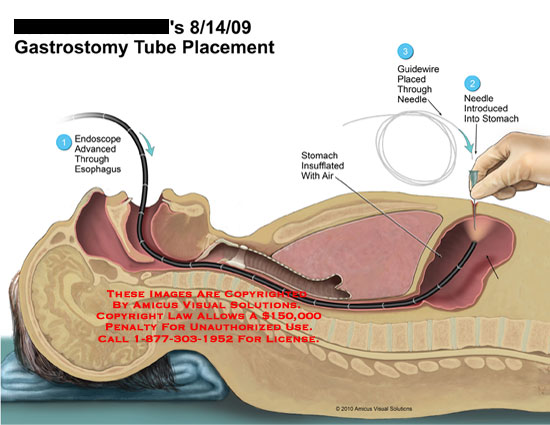 Medical Exhibits Demonstrative Aids Illustrations and Models