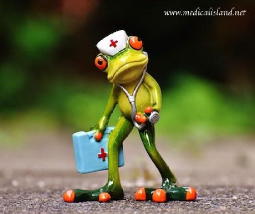 Nursing Frog