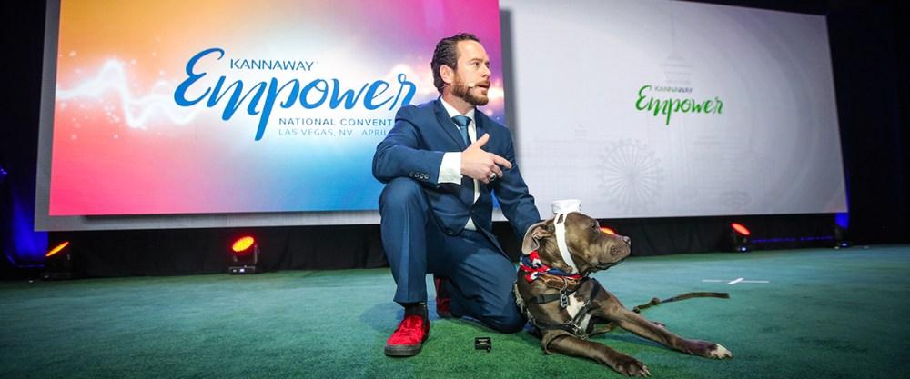 CBD pets pain anxiety