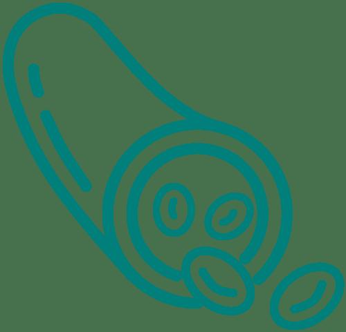 Endovascular-teal