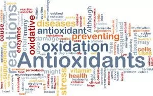 circulating cancer cells benefit from antioxidants