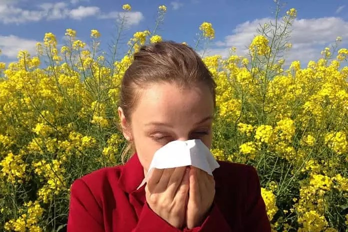 hay fever treatment