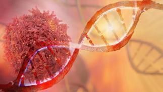 Image result for new dna medicines